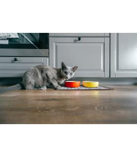 Under-bowl pet mat